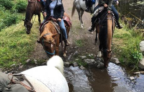 Kane Valley riding