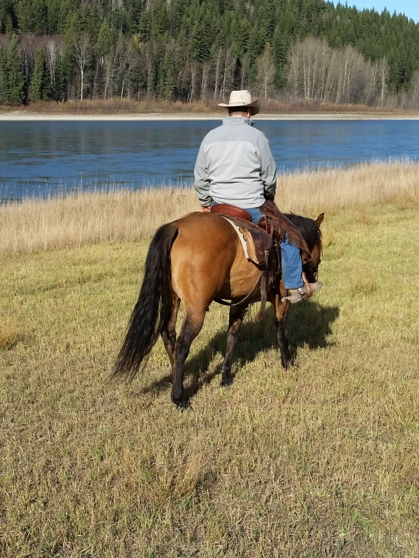 man riding horse off trail