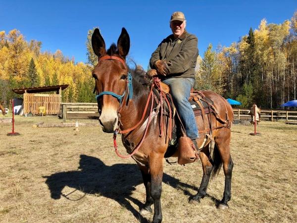 guy on horse